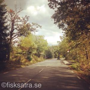 Gamla Saltsjöbadsvägen Fisksätra