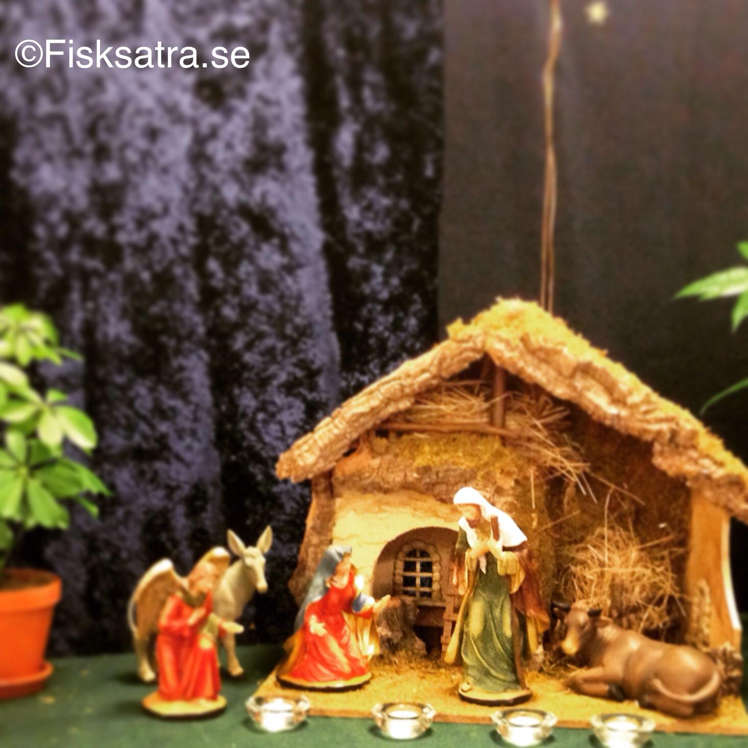 julkrubban i Fisksätra Bibliotek